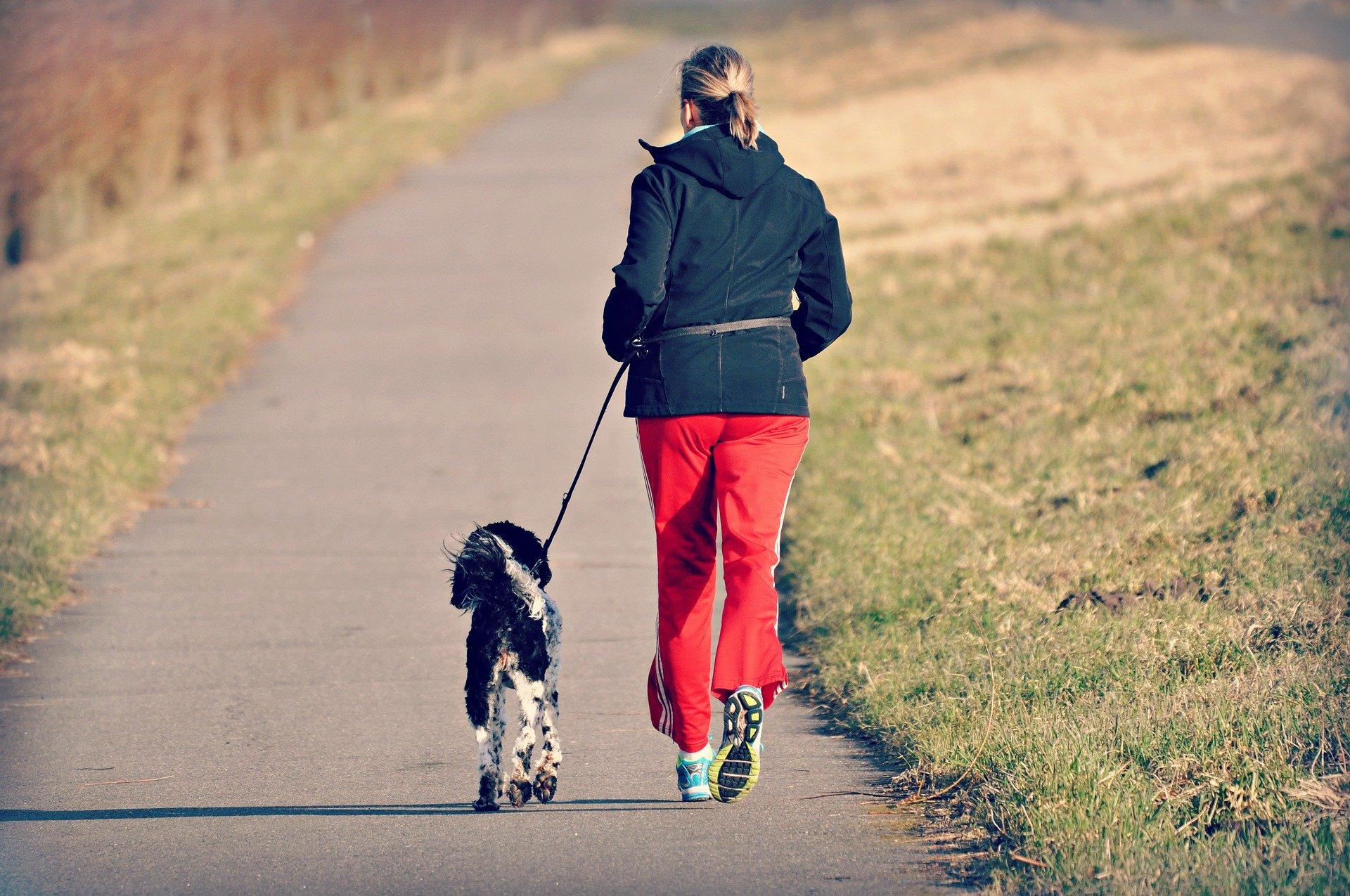 Tra le poche attività permesse all'esterno delle mura domestiche le brevi passeggiate, magari assieme al proprio cane, in prossimità di casa