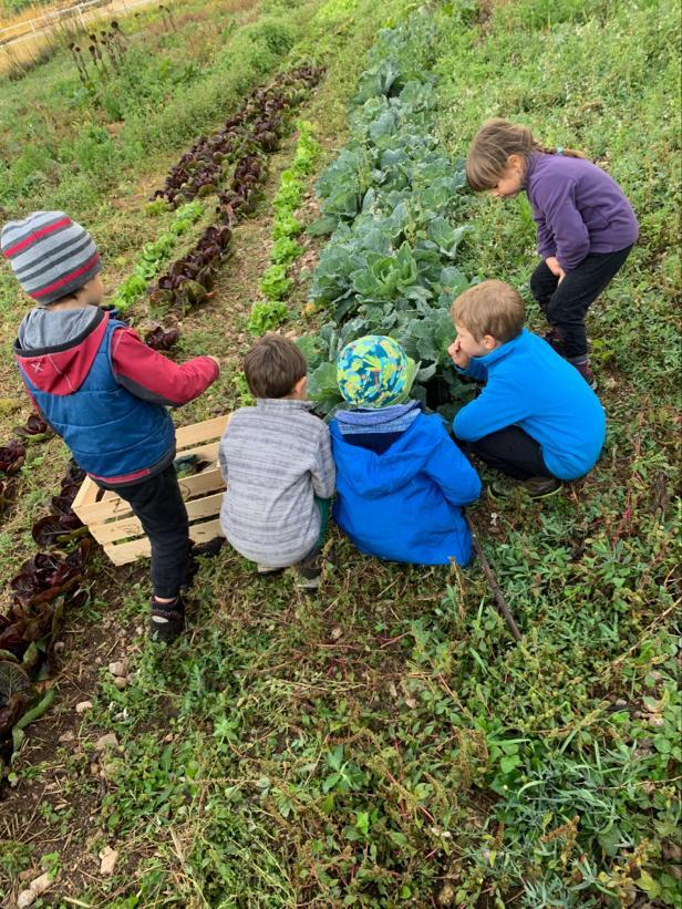 Bambini nei campi