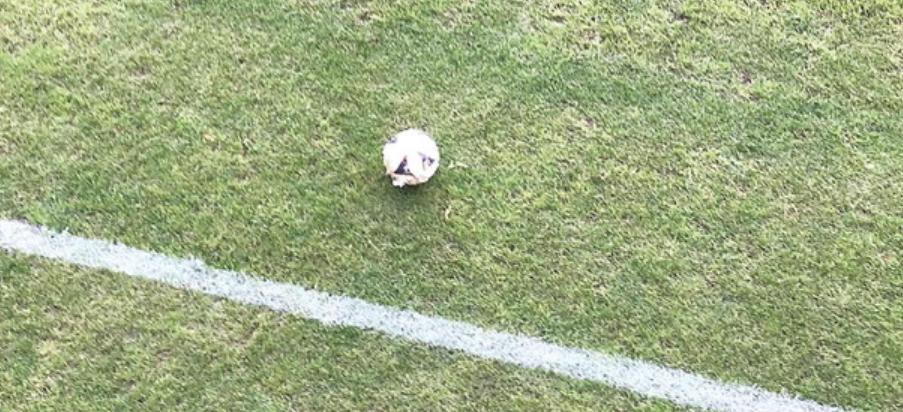 pallone in campo vuoto
